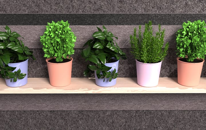 Function, Shelving Plants Detail