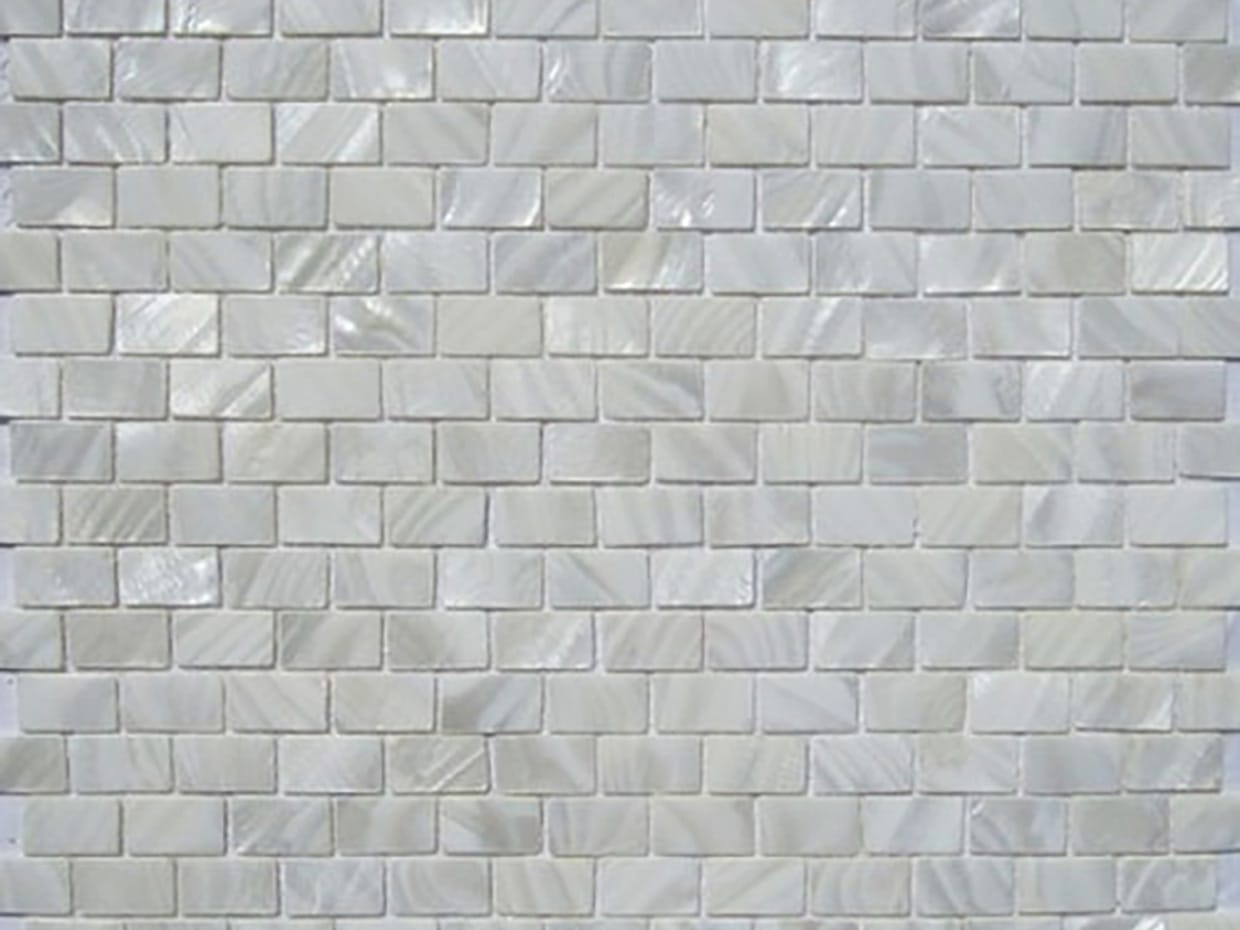 Shell Mosaic Wall Tiles11