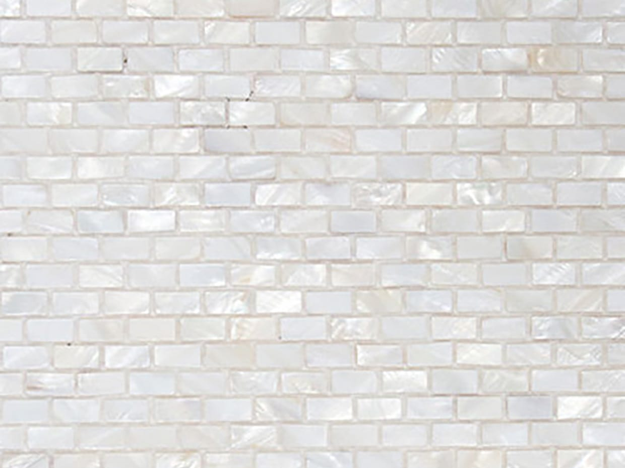 Shell Mosaic Wall Tiles14
